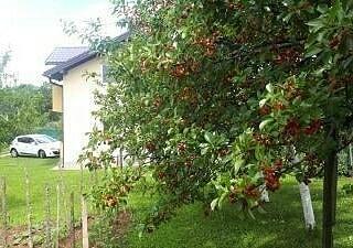 فرصة مميزة للبيع فيلا دورين بسراييفو مساحة الفيلا ١٣٠ متر مع حديقة ٧٠٠ متر بها اشجار فواكه